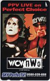 ハルク・ホーガン wcw now SKY Perfect TV!